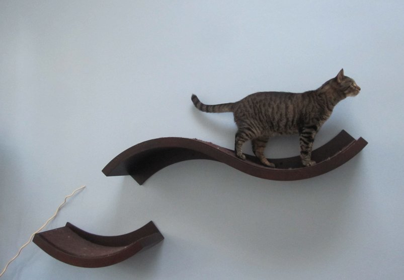 Stylish cat shelves