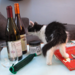 Careers for your Cats, California Wine Clubs, Tickle Pickle