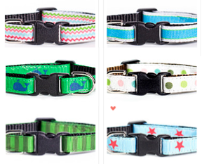 Fashionable cat collars
