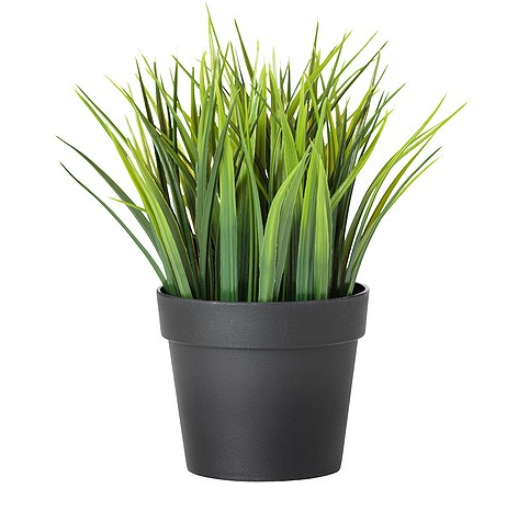 decorating with faux cat grass i have cat. Black Bedroom Furniture Sets. Home Design Ideas