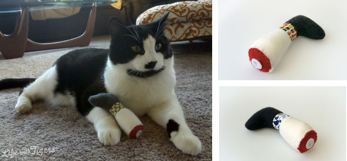 Modern, Fun Catnip toys for Cats