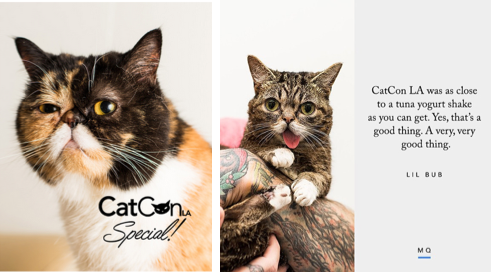 Meow Quarterly CatConLA Special coverage Issue