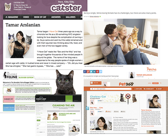 Catster, Blog360, World's Best cat Litter, Petcha