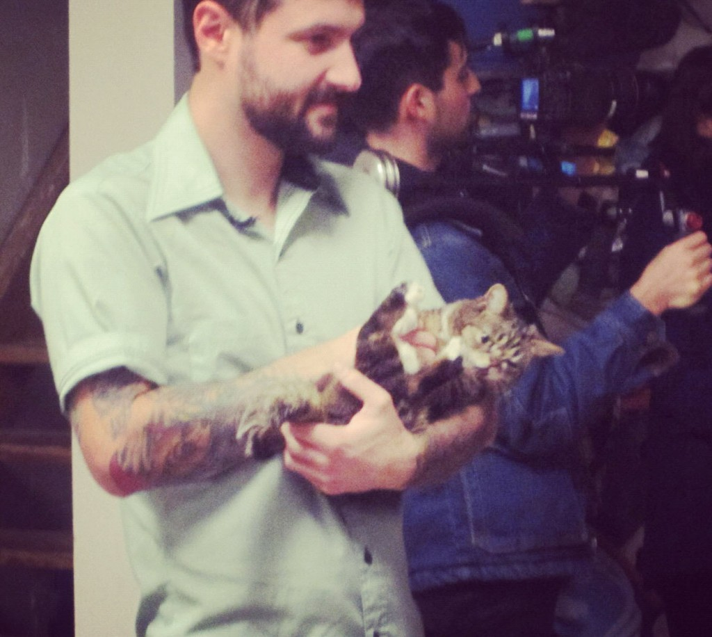 Lil Bub comes to BARC (Brooklyn Animal Resource Coalition)