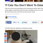 11 Cats Not to Date Online