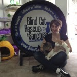Tamar at Blind Cat Rescue & Sanctuary