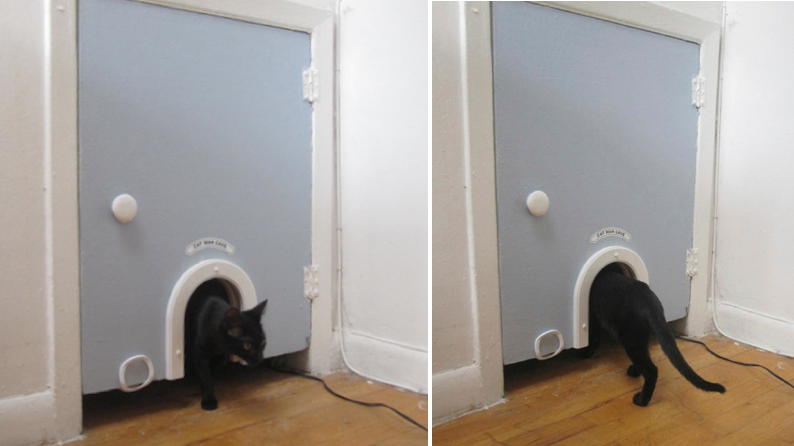 Litter Box Storage