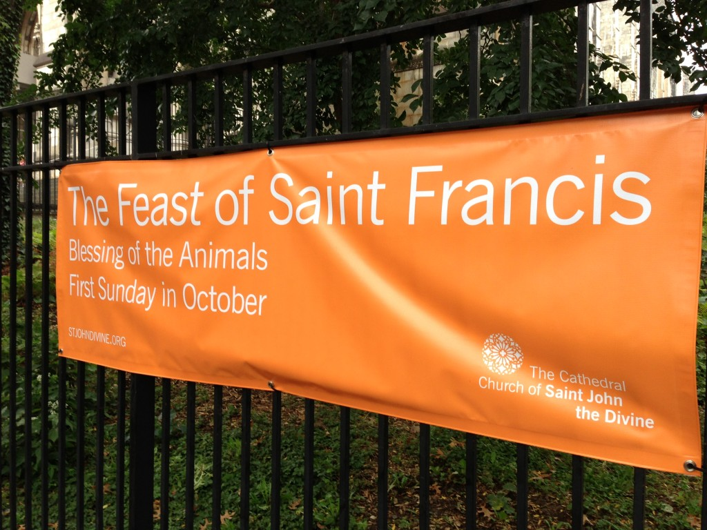 blessing of the animals saint john the divine 2013