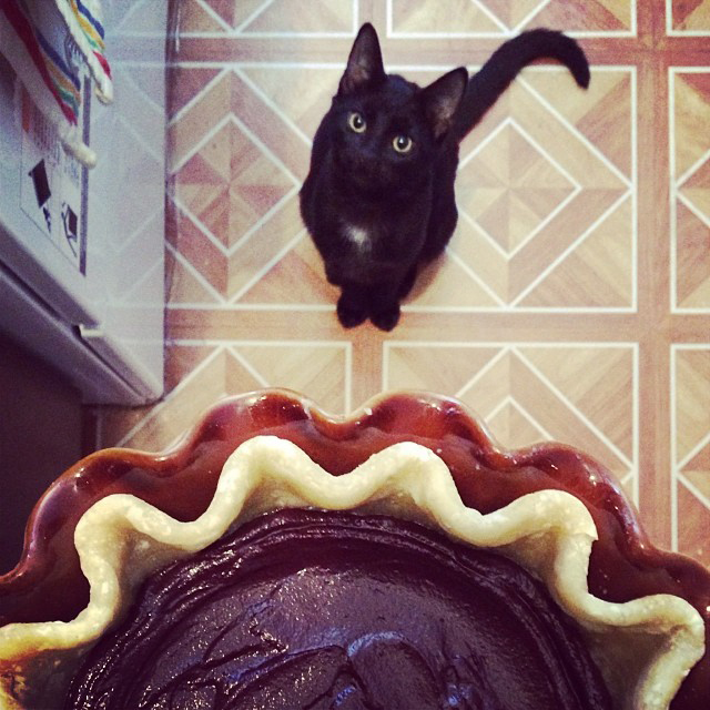 August Wants Pie