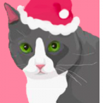 I HAVE CAT Holiday Gift Guide