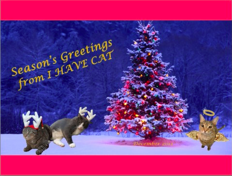 Happy Holidays from I HAVE CAT 2013