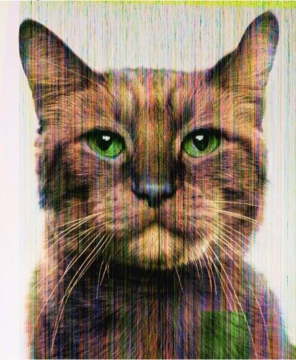 "Jill Greenberg's piece, ""Glitch Cat (Morris)."""