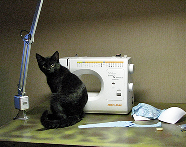 Kitty helps with the sewing
