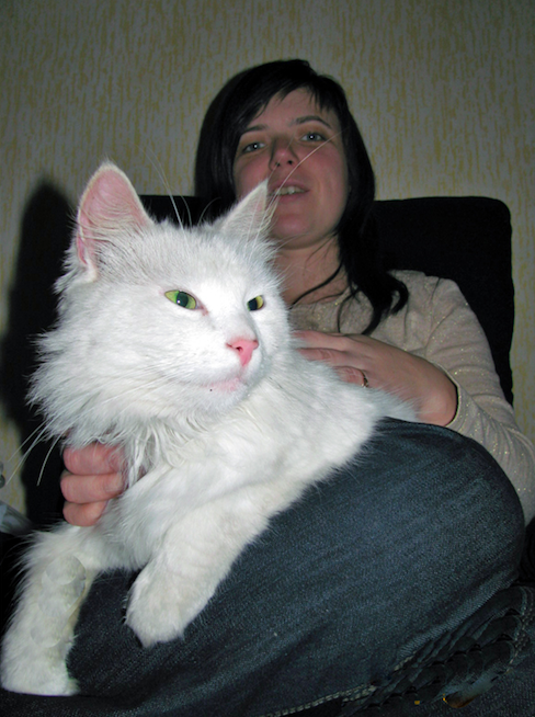 Another rags-to-riches story for a Latvian cat!