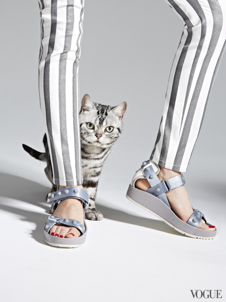 "Vogue ""The Cat and The Flat"" Editorial"
