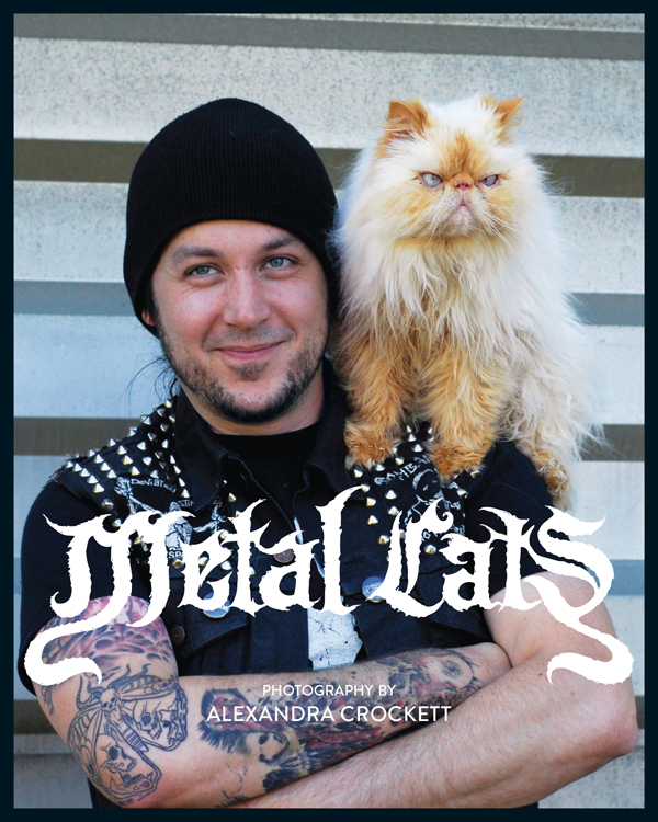 METAL CATS Cover
