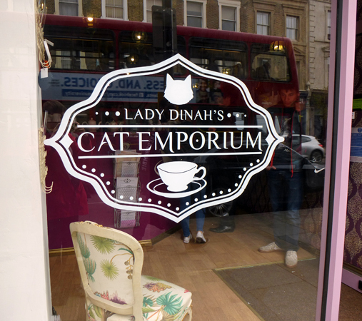 outside of Dina's Cat Emporium