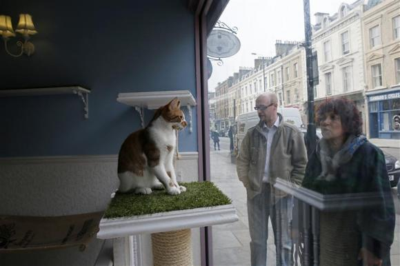 Bringing in the business by posting in the window (uk.reuters.com)