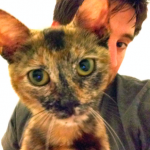 Stephen Sorace with kitten