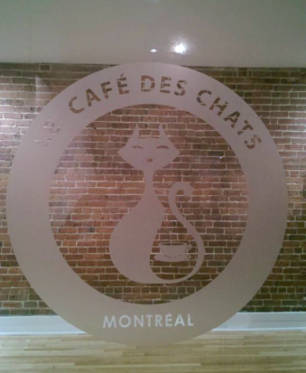 Cafe Des Chats in Montreal