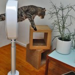 circus cat goes through a Dyson fan