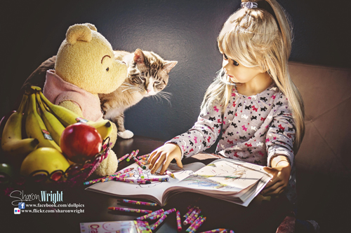 Cat, doll and winnie-the-pooh
