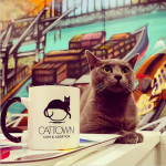 First ever cat cafe in America opens in Oakland