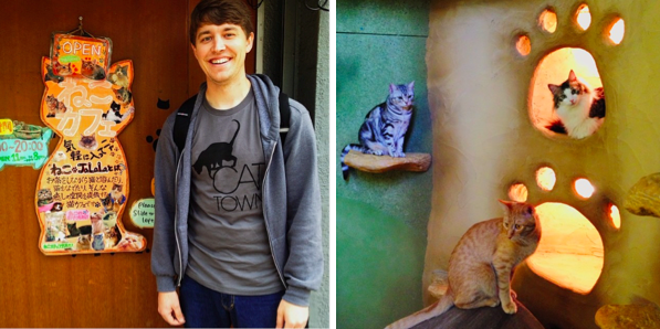 Adam Myatt's visits to cat cafe's in Japan