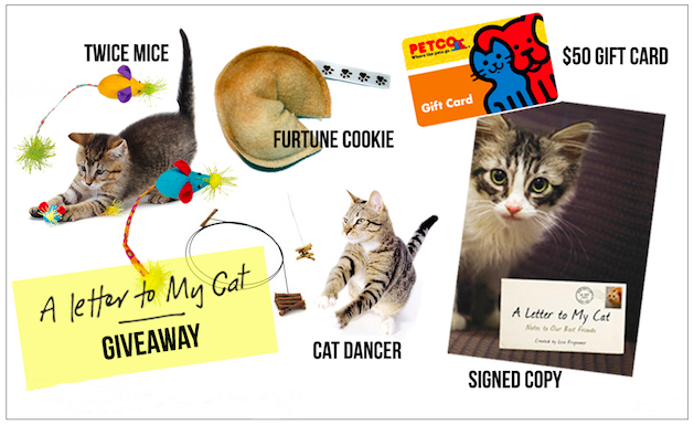 """A Letter To My Cat"" giveaway"