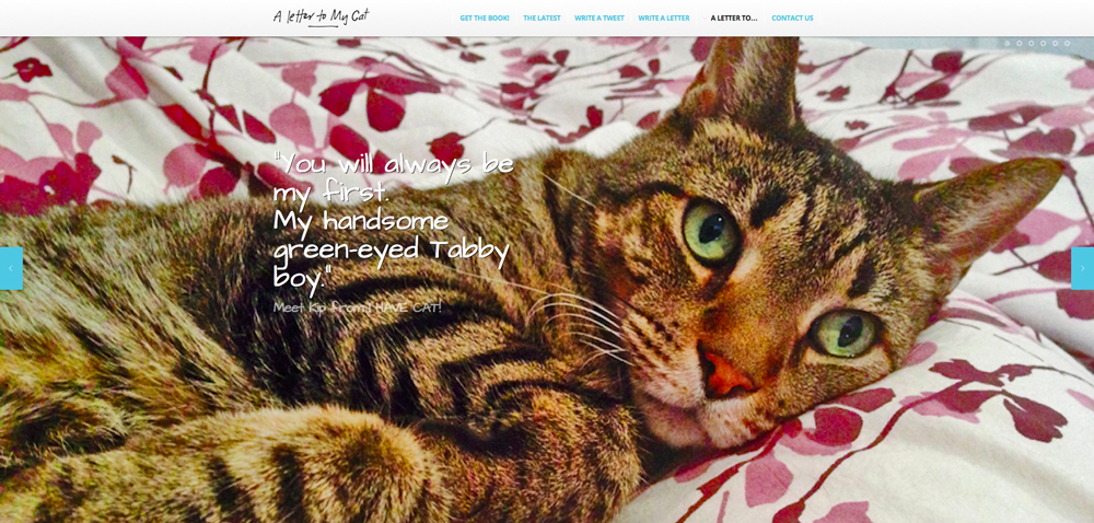 Looks who's on the homepage of ALetterToMyCat.com right next to LIL BUB - they kindda make a cute couple...