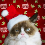 "Grumpy Cat Movie, ""Worst Christmas Ever"""