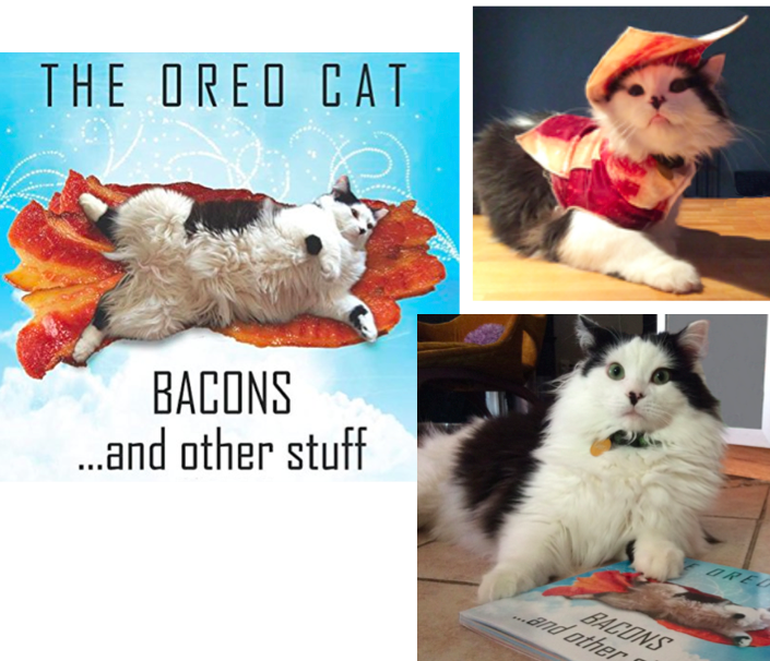 cat books that give-back proceeds to cats