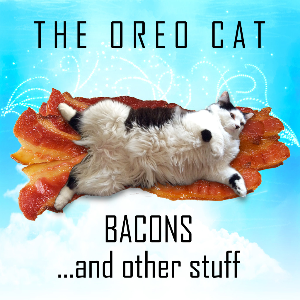 The Oreo Cat Bacons...and other stuff