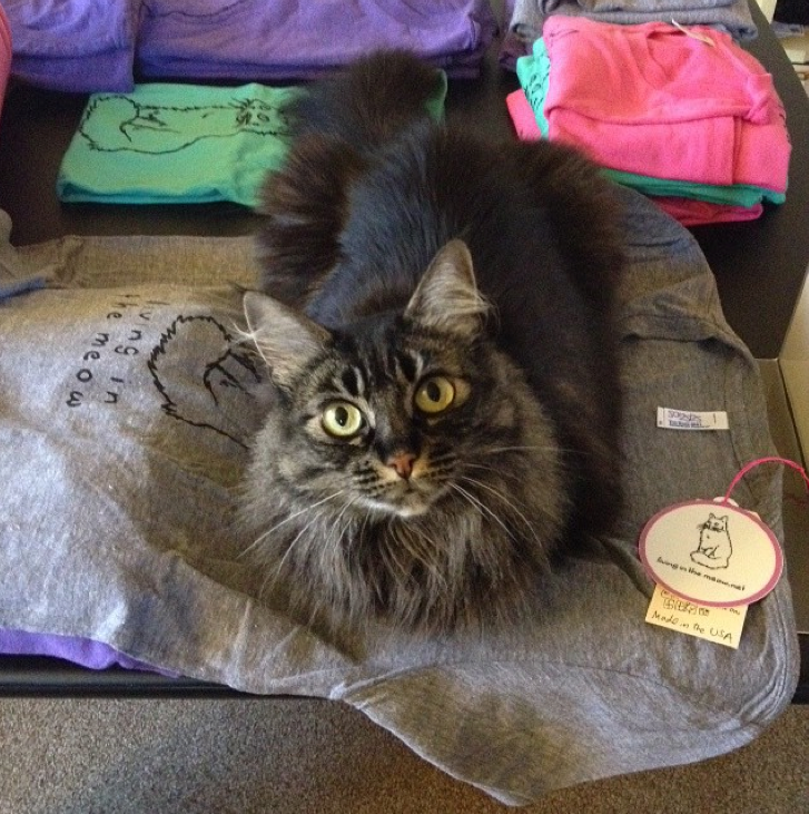 Nutmeg personally approving all inventory =^^= (I'm sure you can request cat hair with that t-shirt you order!)
