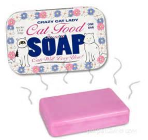 What Human Soap Is Good For Cats