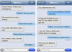 A few of the first text between Mittens and Angie published on Catster.