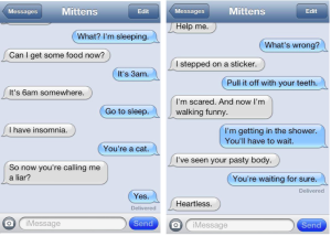 "One of the original set of ""Texts With Mittens"" published on Catster"