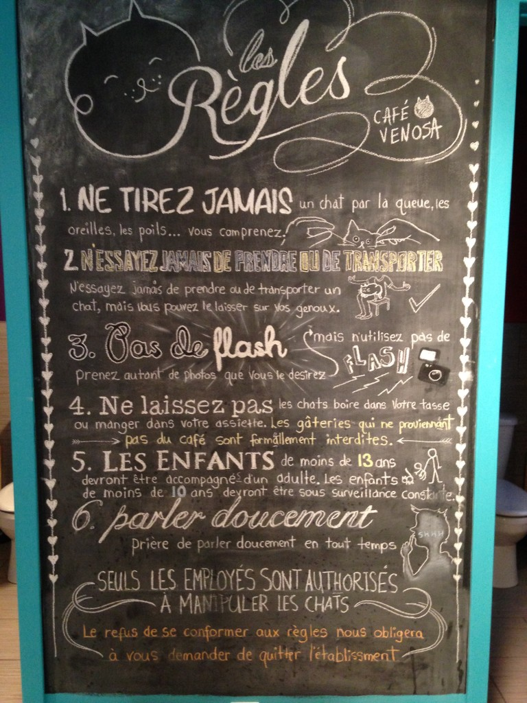 Cat cafe rules - in French! Better download a translator app before visiting!