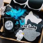 Cat Lady Box