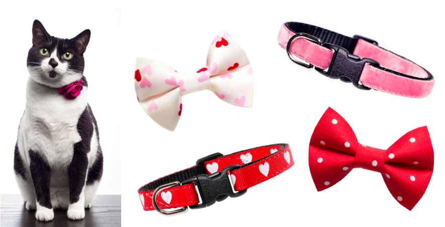 Sweet Pickles Valentine's Day collars and bows