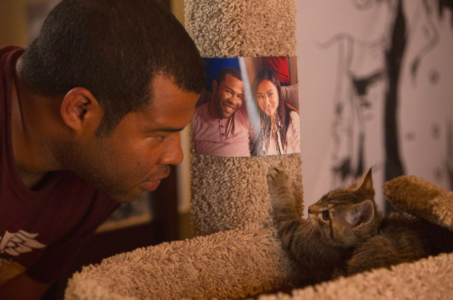 Keanu kitten and Jordan Peele