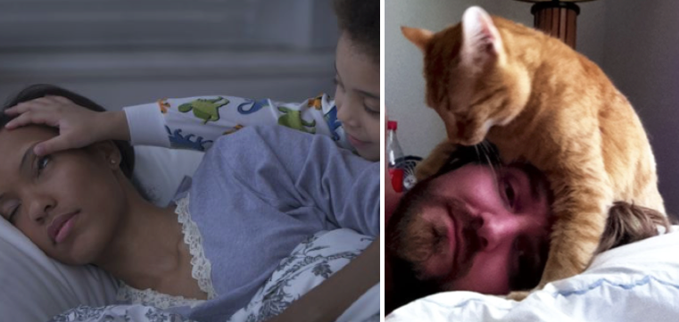 cats and kids waking parents
