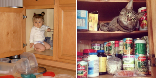 Kids and Cats in the Cupboards