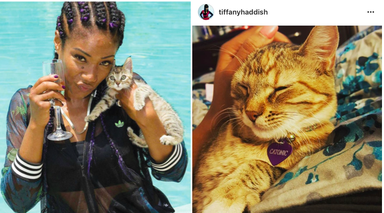 "Tiffany Haddish with her grown up ""Keanu"" kitten renamed Catonic (originally Clementine)"