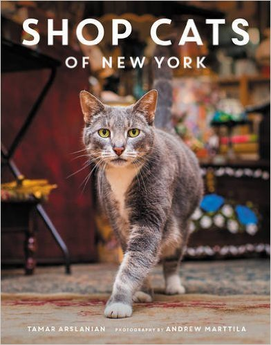 Working Cats in New York City