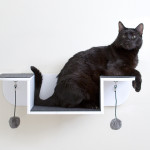 multi purpose cat shelves