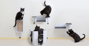 modern cat shelves and scratchers