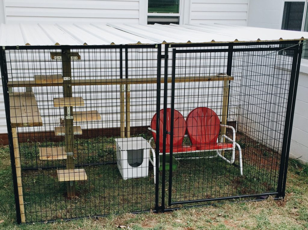 safe outdoor space for cats