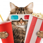 Cats in the movies