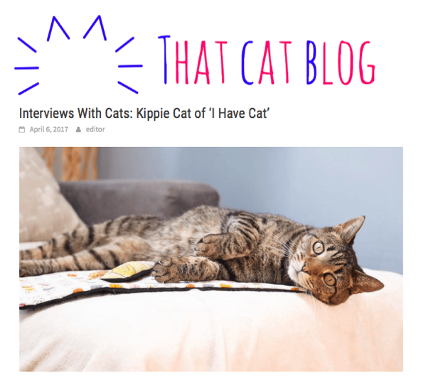 Interview with i Have Cat
